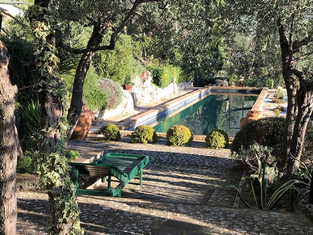 Romantic apartment and  pool  in Central Umbria.