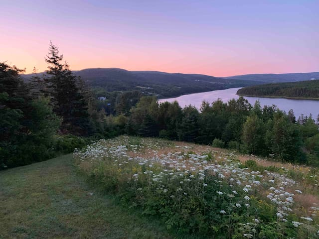 Overlooking the Magical Margaree