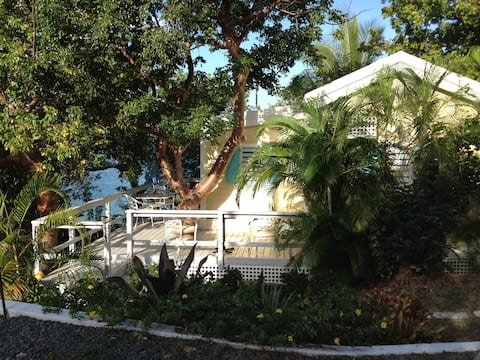 Tree House Cottage at Shipwreck Point