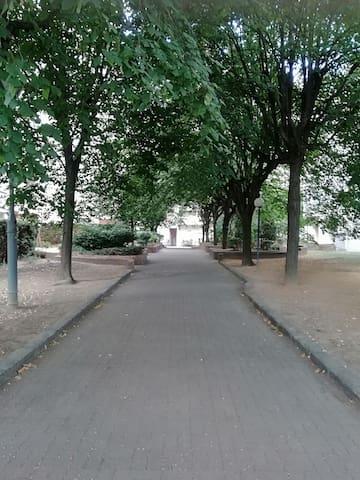 Le rive Seine