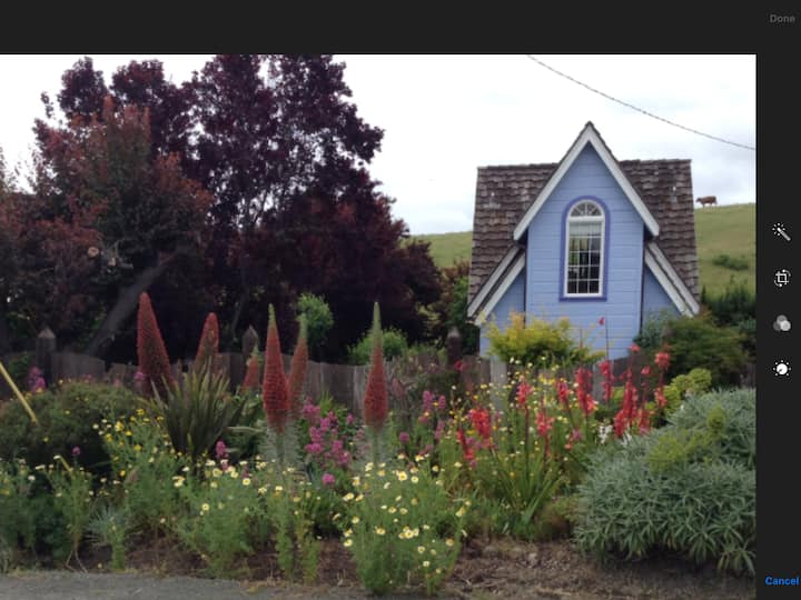 Pescadero    MY BLUE HEAVEN cottage