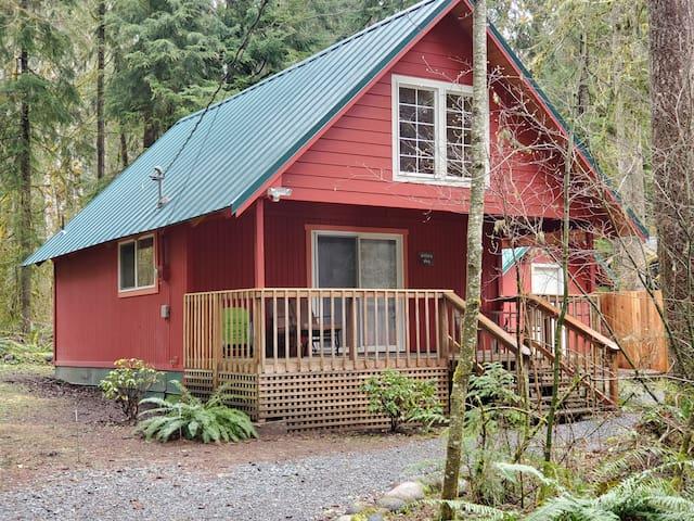 Sweet Willa's Cabin by Mt Rainier