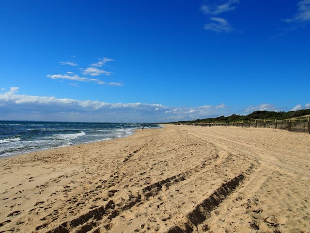 Wake up across the road from the beach! - Seaford - Dom