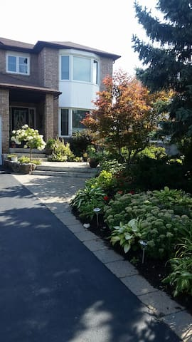 Cozy, Modern, Walkout Bmt Apt. In Vaughan, ON.
