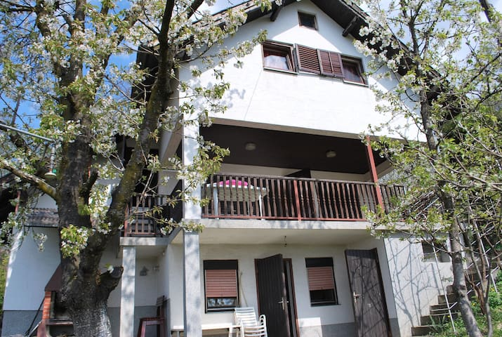 Kuća za odmor Draškica - Andraševec - Feriehus