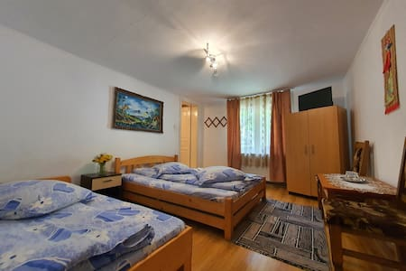 Holiday home in the Carpathians, Bran County