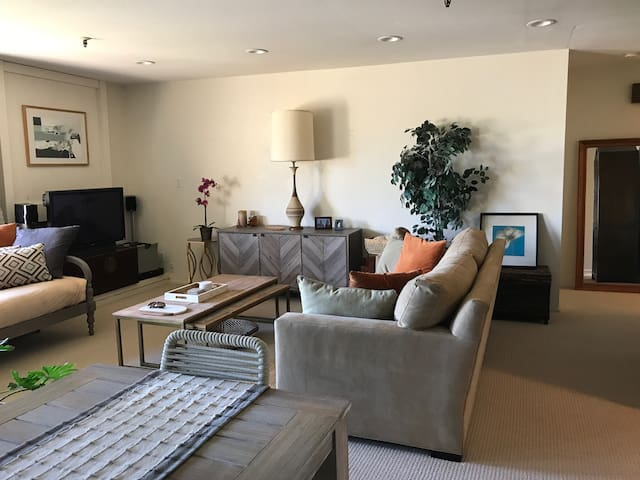 Light, spacious, airy 1-BR w/pool + hot tub in MV