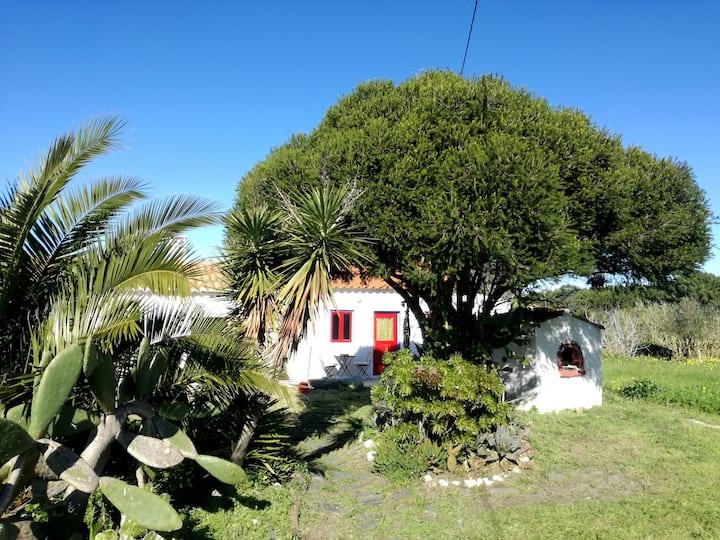 Barradinha beach house, 5 m walking from the beach