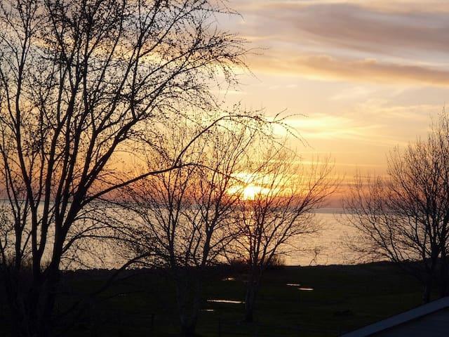 Island Getaway: Villa Wenona - Deal Island - Hus