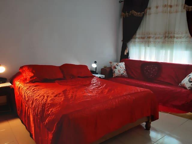Habitación con baño privado ,cama matrimonio y sofá cama.