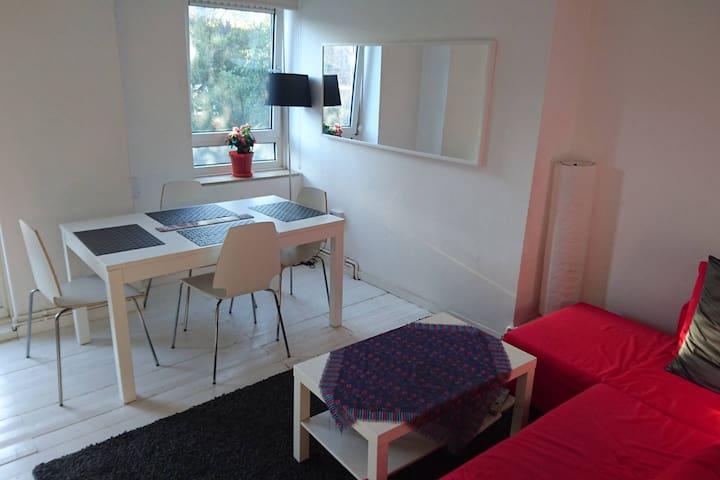 Room in bright flat near Camden (Chalk Farm) - London - Apartment