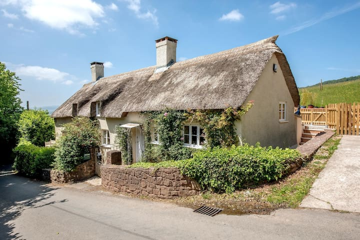 Charming thatched cottage set in a pretty Somerset village that sleeps 10 - Biddle Cottage