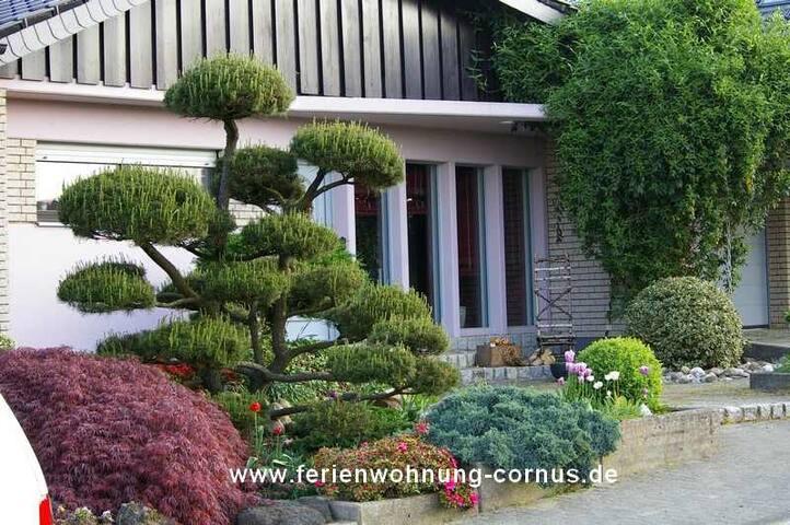 Ferienwohnung Cornus - Westerwald