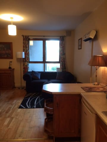 2 Bedroom City Centre Apart.-Galway City - Galway