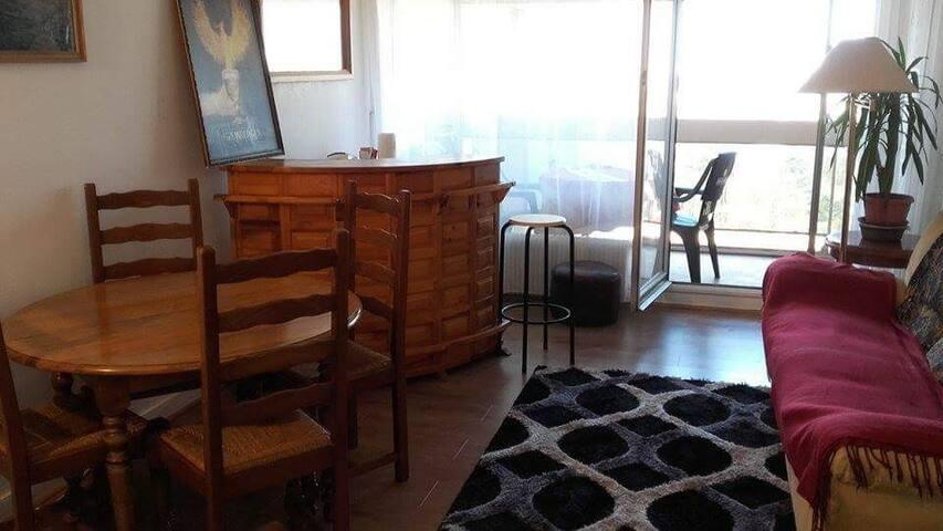 Appartement de 50m² avec balcon - L'Haÿ-les-Roses - Flat