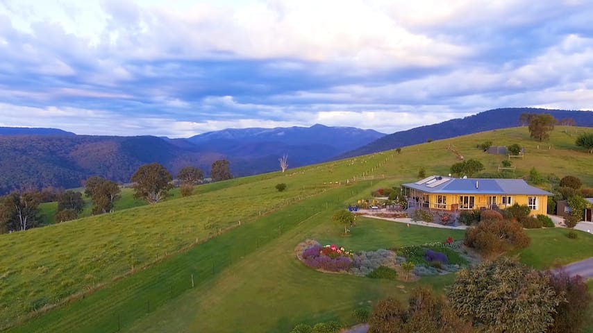 Wild Dog Rise - Mt Buller - Private Wing