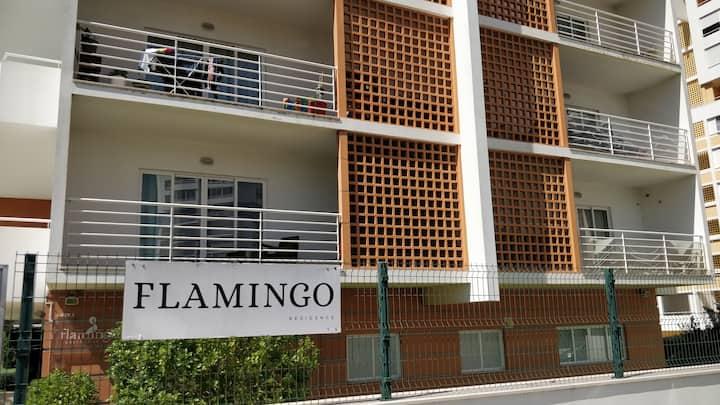 Flamingo residence com piscina
