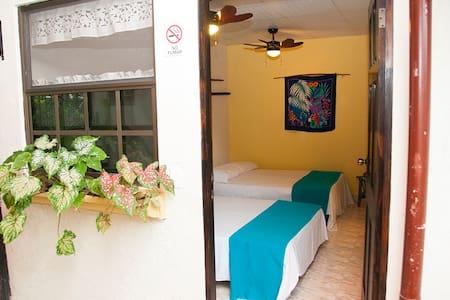 Double Tropical Garden Room #9 - Antón