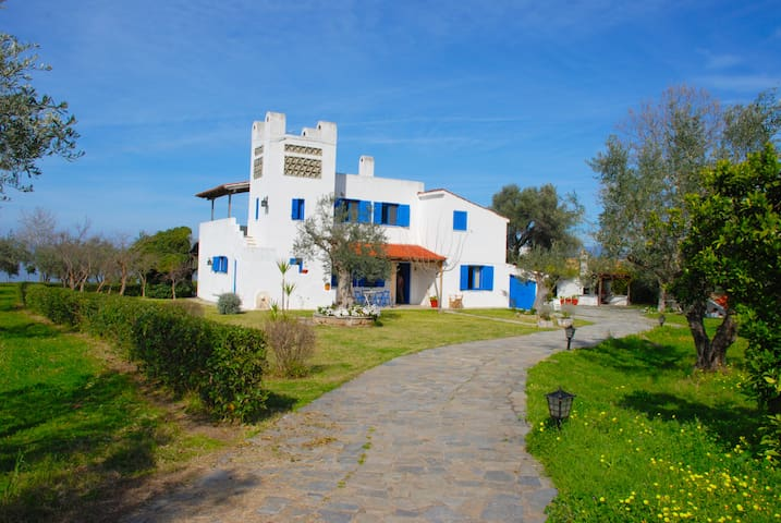 Beachfront two floor cottage house in  olive grove