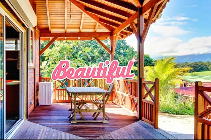 magnifique maison créole dans un cadre verdoyant