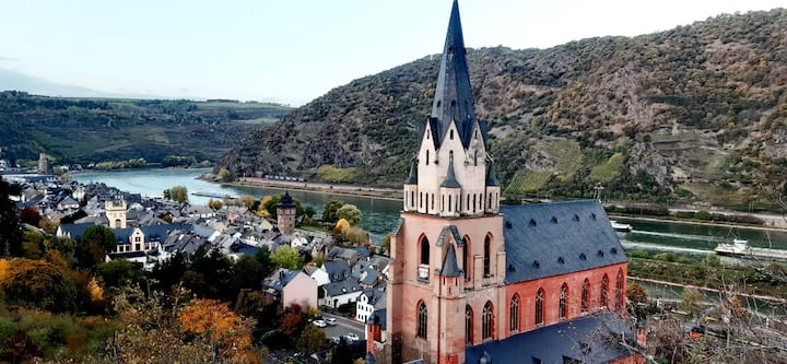 Service Apartment,Fantastic Views of Rhein Vally