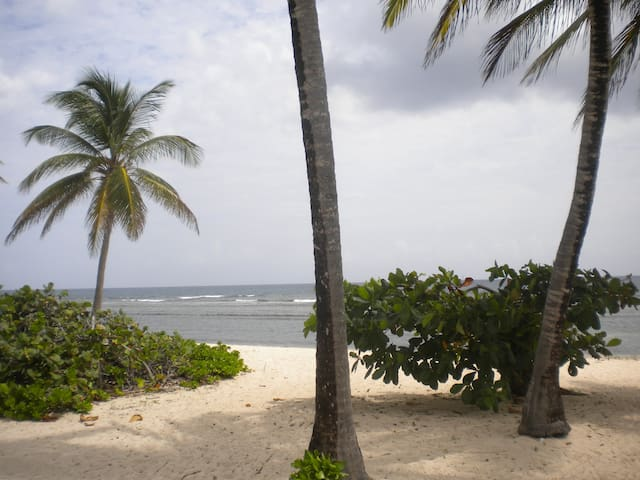Toes in the Water, Sea View 2 BR condo - St. Croix - Condominium