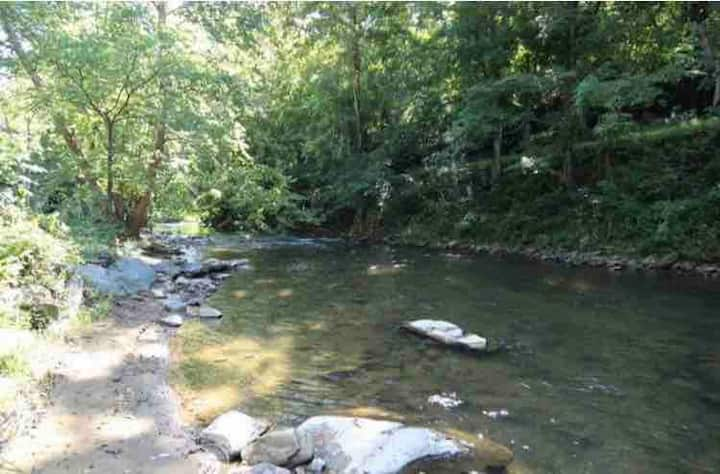 Roan Creek Cabin with River and View