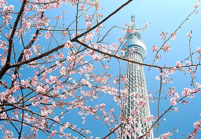 [NEW] Tokyo Skytree 2 mins, Near Sta, Cozy Apt-1 - Sumida-ku - Departamento