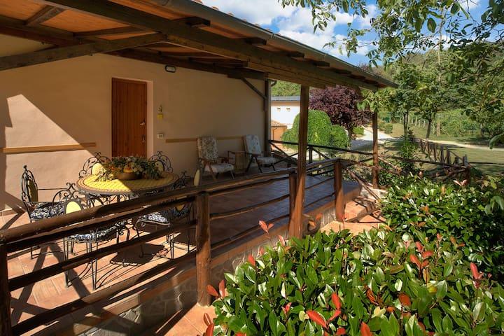 House with terrace in Farmhouse.WiFi Pool Restaura - Terranuova Bracciolini - House