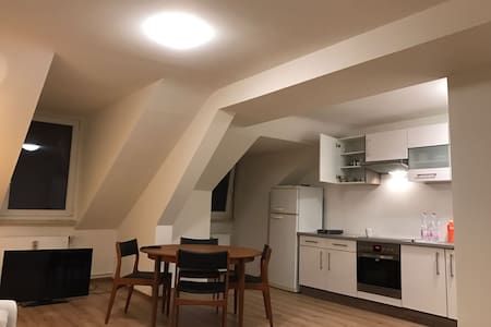3MINUTE WALK BASELWORLD FLAT IDEAL FOR 3-5 PEOPLE - Basel - Íbúð