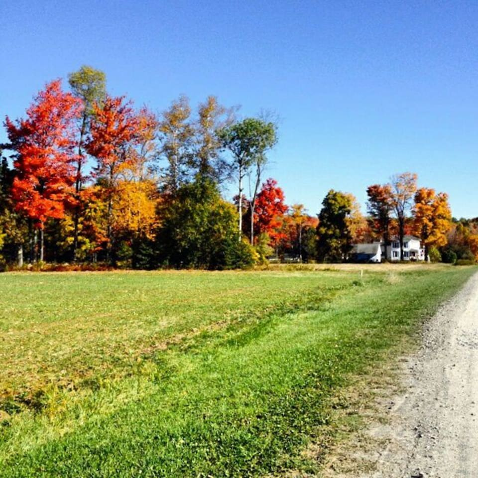 The view of the farm during Autumn leaves changing colors.