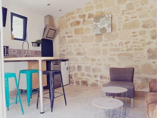 A 2 pas d'Arles, maison de ville avec cour