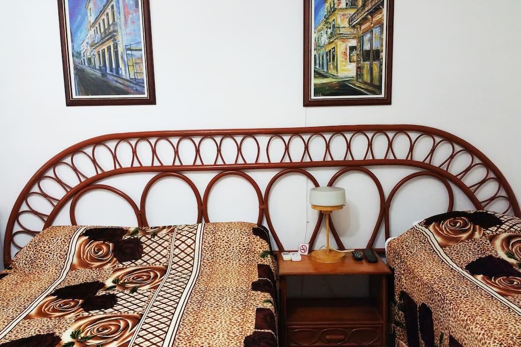 La distribución de las camas esta pensada para una familia con un niño u adolescente o para una pareja sola.