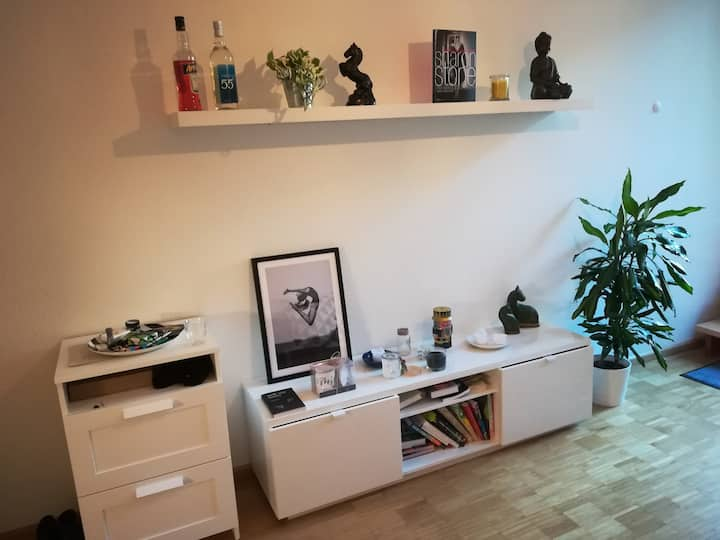 Cozy 2-bedroom studio in downtown Basel