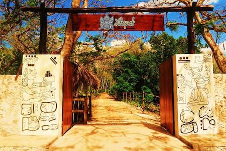 Xkopek Camp, Bee Park - Valladolid  - Khemah