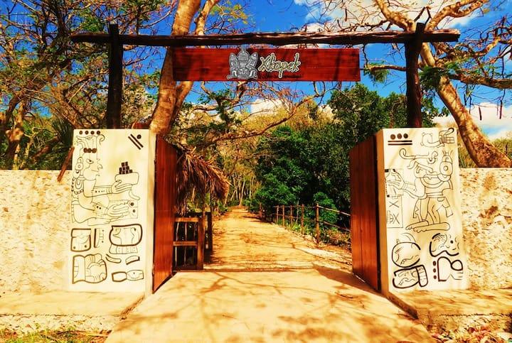 Xkopek Camping, mayan bees farm