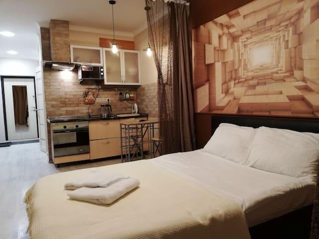 Apartment Loft 1