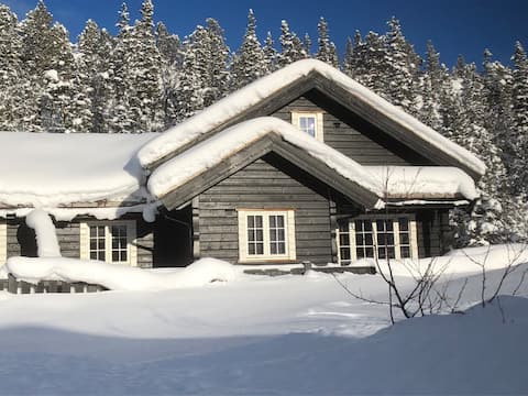 Sunny side Kilen Lodge. Ski in/out