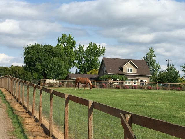 Wine Country Horse Farm + Views!