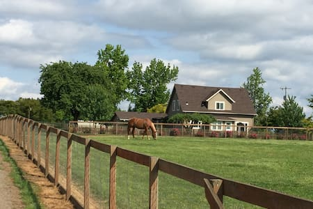 Large Private Room on Horse Farm in Wine Country - Dayton