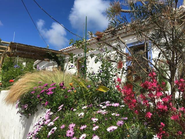 Casa das Flores - Bordeira - House