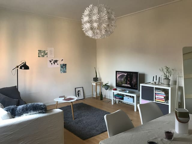 Cozy appartment in central Aalborg