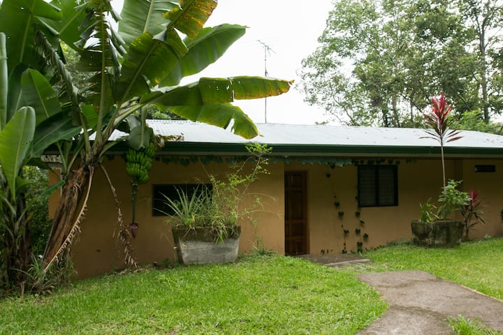Private Cabin Surrounded by Tropical Rain Forest