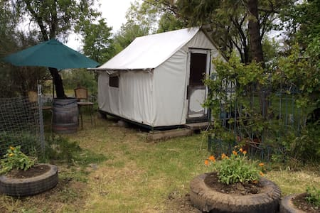 Charming tent cabin, park setting - Chinese Camp - 帐篷