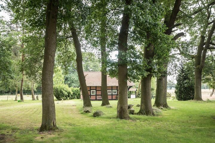 Backhaus im hinteren Bereichs des Hofes