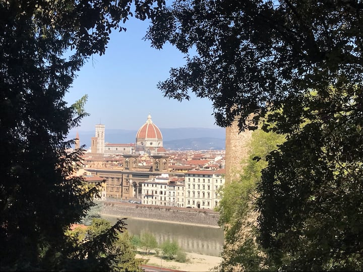 Amazing view on Florence
