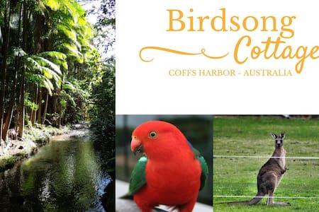 Birdsong Cottage Coffs Harbour - Two Rooms - Coffs Harbour - Talo