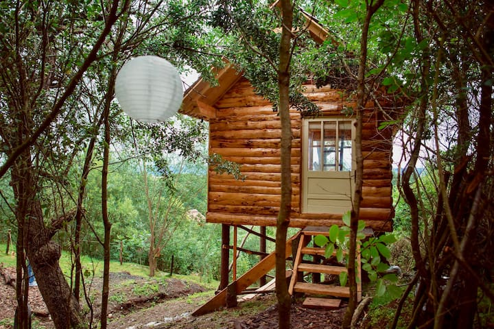 Transylvania Tree House   ★ Self Check-In ★
