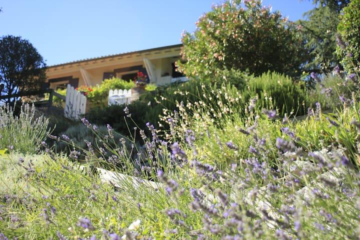 Halte au vert près de Toulouse  (Chambre 2) - Castanet-Tolosan - House