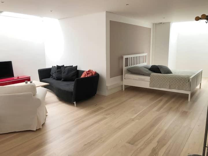 Modern quality basement apartment in private villa